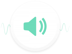 music audio speaker icon